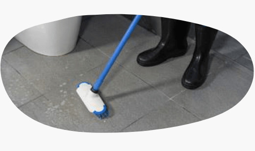 Tile and Grout Cleaning Service Sunshine Coast